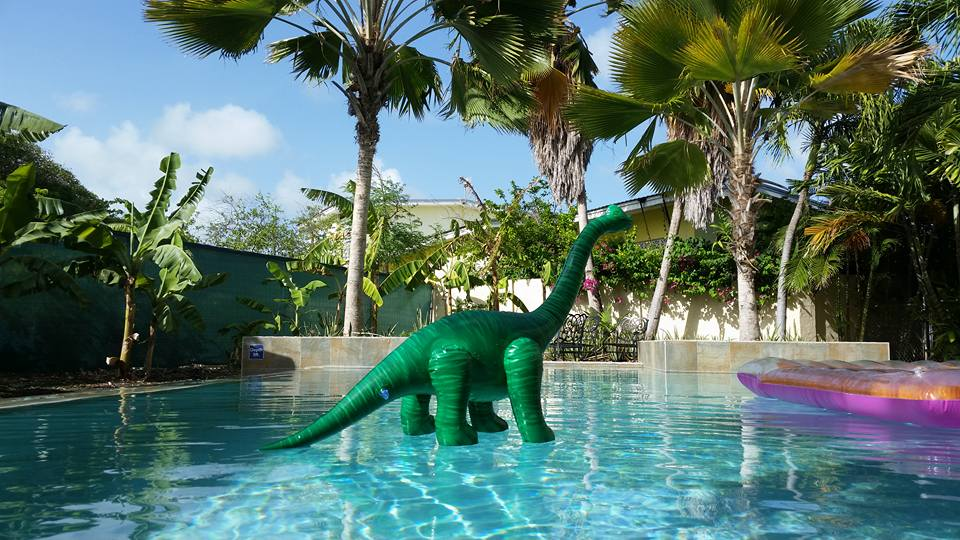 the green dinosaur is on a long vacation (image - an inflatable green dinosaur standing on top of water in a swimming pool, with palm trees in the background)